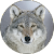Gray wolf Sounds file APK for Gaming PC/PS3/PS4 Smart TV