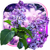 Lilac Tender Live Wallpaper Android APK Download Free By SweetMood