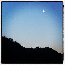 Photo: Half moon over the mountain at Pitt Lake #intercer #mountain #moon #sun #shadow #nature #reflection #instanature #black #blue #sky #light #sundown #dusk #trees #dark - via Instagram, http://instagr.am/p/Nu2SanJfqn/