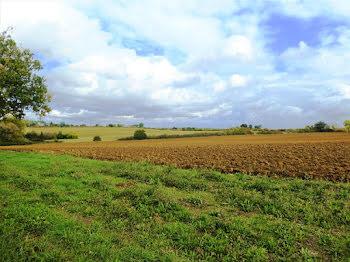 terrain à Puységur (32)
