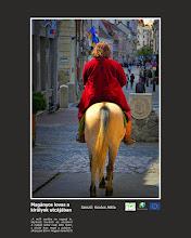 """Photo: RO: Călăreț singuratip pe strada regilor """"Să nu te blochezi în noroiul trecutului, Dute mai departe pe drumul tău! Numai în present poți crea, viitorul va fi recompensa."""" (Aranyosi Ervin: Cum să creezi?)  EN: Lonely rider on the streets of kings """"Do not stuck down in the mud of the past, Go ahead on your way! You can only create in the present, your future will be your reward."""" (Aranyosi Ervin: How to create?)"""