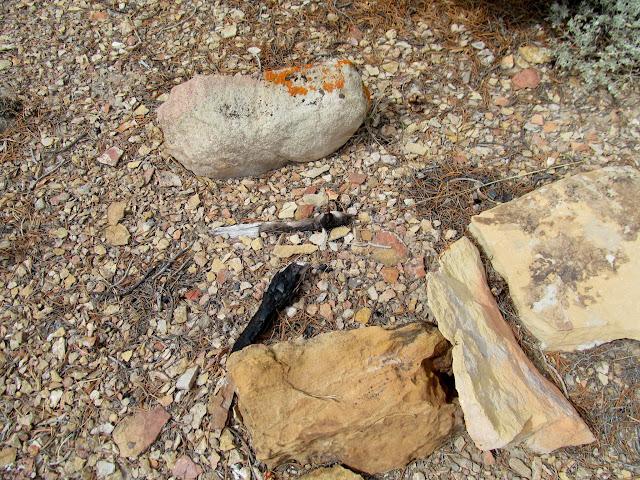 Fire-reddened rocks and burned wood