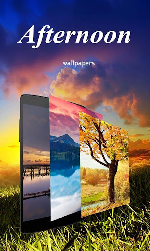 Afternoon Wallpapes