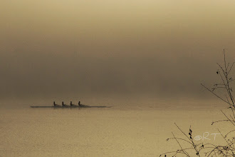 """Photo: The final in a series I'll call """"The Rowers"""""""