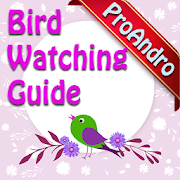 Bird Watching Guide and Identification