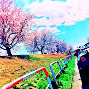 BRZ ZC6 GTのカスタム事例画像 pecoさんの2019年12月29日03:09の投稿