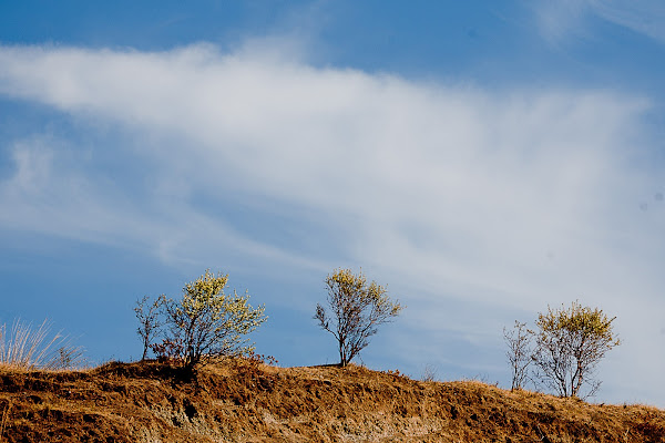 solitari di Fiorenza Aldo Photo