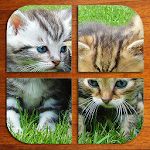Kittens Puzzle (FREE) 2.2 Apk
