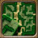 Reiner Knizia's Labyrinth icon