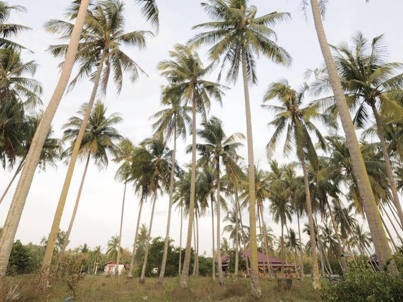 The Village Langkawi