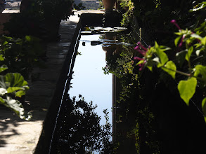Photo: A bit of culture (Chopin's Garden at the Abbey in Valldemossa)