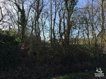 terrain à batir à Beaumont-de-Lomagne (82)