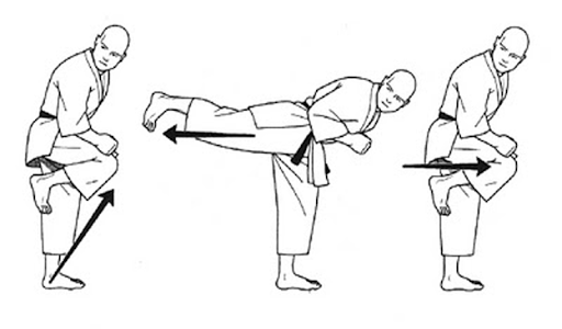 Learn Kung Fu screenshot