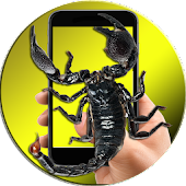 Scorpion On Hand Screen Photo