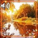 Autumn River HD icon