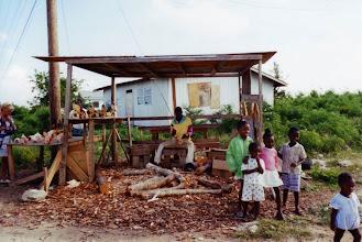 Photo: #016-L'île San Salvador
