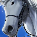 Horse Anime Wallpapers icon