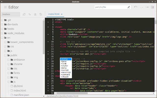 Seabass code editor