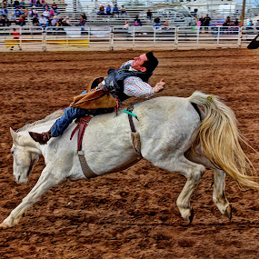 by Jim Moon - Sports & Fitness Rodeo/Bull Riding ( bronc rider, whisper river photography, cowboys, horse, rodeo )