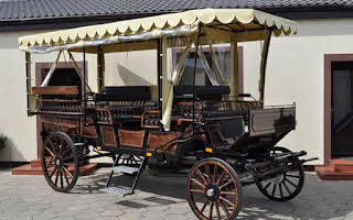 Carriage Picnic Wagon Rent Central Region