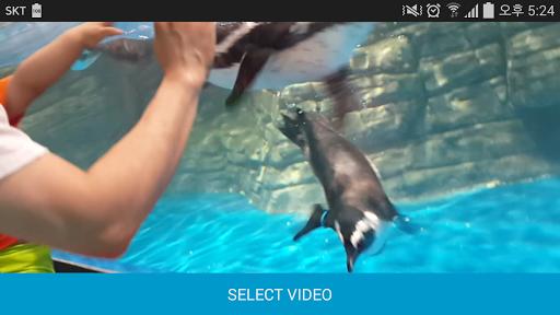 Video Repeat Looper