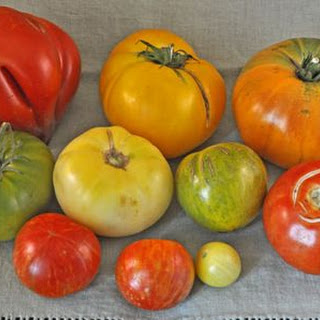Healthy Stewed Tomatoes Recipes
