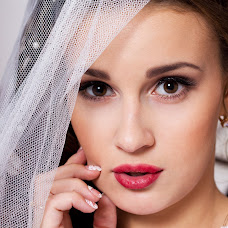 Wedding photographer Elena Sulikaeva (ElenaPh). Photo of 09.11.2015
