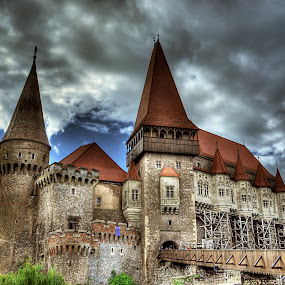 The castle by Alina Dinu - Buildings & Architecture Public & Historical ( building, hdr, castle, romania, architecture,  )