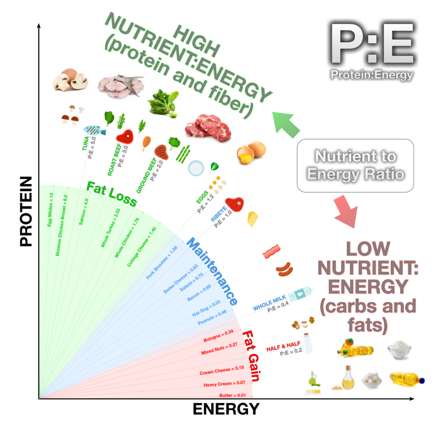 Rethink the 3 Macros - PE Diet 2