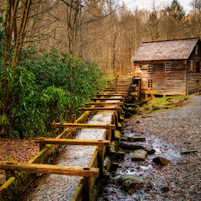 Mingus Mill by Evan Jones - Buildings & Architecture Public & Historical ( hills, old, mountain, wood, pioneer, great smoky mountains national park, yellow, architecture, house, travel, leaves, rustic, historic, heritage, preserve, weathered, ridge, frontier, mill, nature, foliage, civilian, parks, power, government, millhouse, flume, national, international, forest, tourism, log, unesco, mingus, country, smokey, landmark, vacation, carolina, biosphere, outdoors, cove, reserve, appalachian, natural, waterway, region, cabin, wheel, america, waterwheel, land, states, era, north, corp, landscape, hydro, usa, smoky, grind, mountains, federal, aqueduct, dwelling, mingus mill, conservation, ridgeline, ecology, monument, smoky mountains, water, site, great smoky mountains, united, park, tennessee, us, watermill, smokies, woods, gristmill, history, grist, wilderness, wooden, great, days, blue, chain, fall, south, cades, world, preservation )