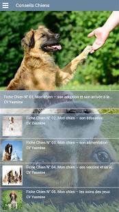 Clinique Vétérinaire Yasmine - náhled