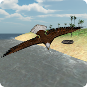 Fast Bird Simulator Rio Android APK Download Free By TrimcoGames