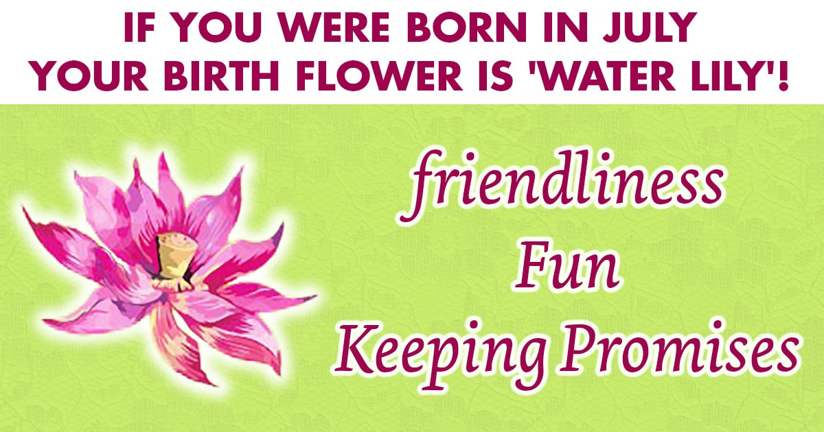 Image result for july birth flower waterlily pic