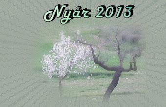 Photo: Vår resa över Nyår för att fly raketer. Jag förvånas över att se några Mandelträd redan i full blom!!!  Förra året blommande dom i slutet på Februari. Oj vad mycket tidigare våren kommer i år hit till Murciaprovinsen
