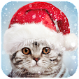Christmas P.. file APK for Gaming PC/PS3/PS4 Smart TV