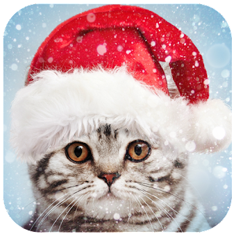 Christmas Photo Frames, Effects & Cards Art 🎄 🎅