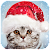 Christmas Photo Frames, Effects & Cards Art 🎄 🎅 file APK for Gaming PC/PS3/PS4 Smart TV