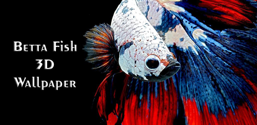 Unduh 88+ Gambar Ikan Cupang 3d HD Terpopuler
