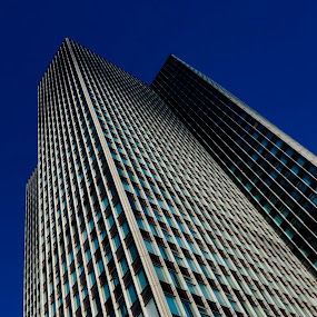 looking up by Sue Fisher - Buildings & Architecture Office Buildings & Hotels ( lookup, minimal, skyscraper, building, architecture,  )