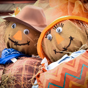Autumn Harvest; Scarecrows by Gwyn Goodrow - Public Holidays Thanksgiving ( love, mr. and mrs., orange, autumn, scarecrow, fall, festival, couple, harvest, romance )