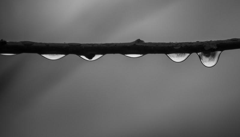 inside the drops di samuele.laurenzi