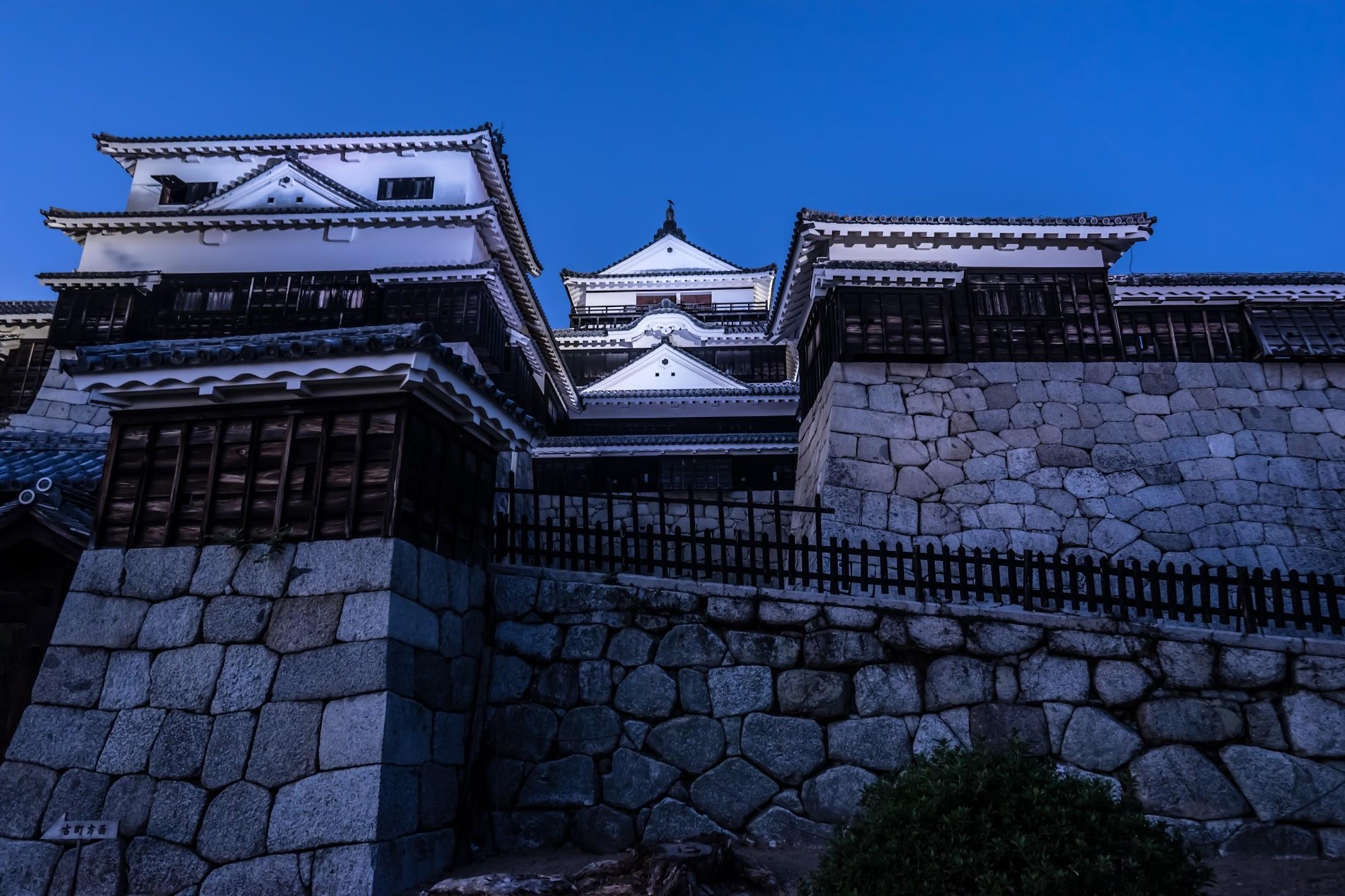 松山城 夜景1