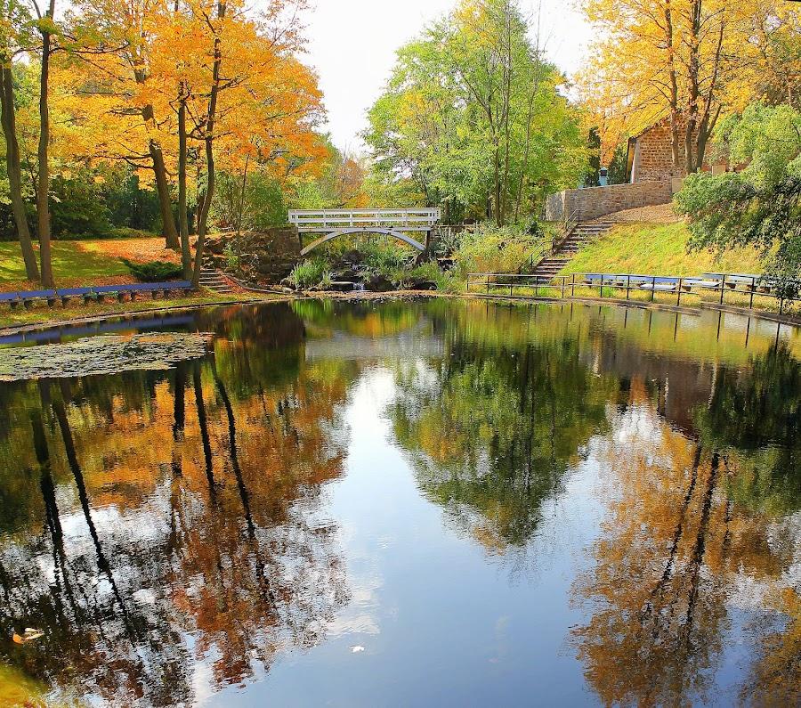 Autumn in Montreal  by Diana Campeanu - Landscapes Waterscapes ( montreal, canada, waterscape, colors, fall, lake, bridge, island )