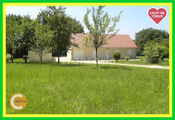 maison à Chatillon-sur-loire (45)