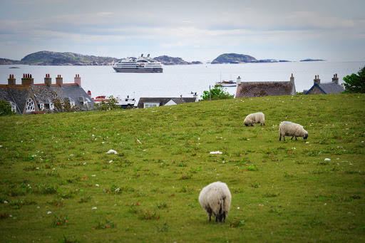 Ponant-Scotland-Iona.jpg - Visit Iona, one of the Hebrides Islands of Scotland, on a Ponant cruise.
