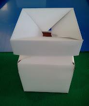 Photo: Caixa Especial (26) - Detalhes na abertura - VI. Retira-se o produto pela pequena abertura superior central.