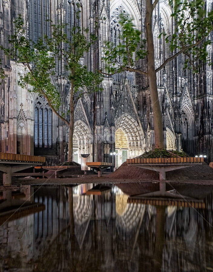After rain by Aleš Komovec - City,  Street & Park  City Parks ( cologne, bench, pwcbenches-dq, trees, reflections, cathedral, köln )