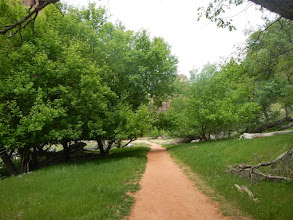 Photo: Pleasant hiking trail between the Lodge and the Grotto.