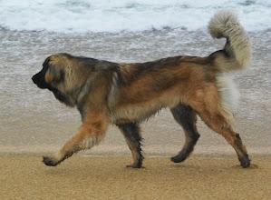Photo: Ca m'éclate cette plage