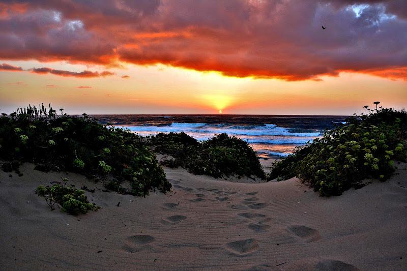 Impronte al tramonto di Apnea